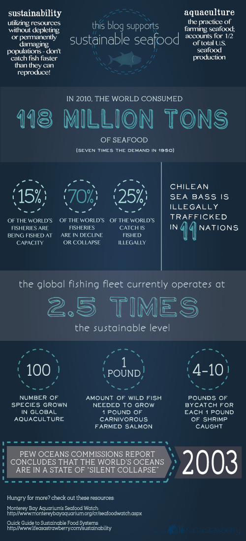 Sustainable Seafood Blog Project Infographic   Fork Knife Swoon