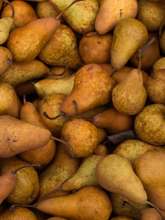 fresh Bosc pears at the farmers market via forkknifeswoon.com